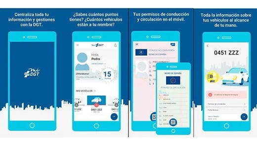 ver puntos carnet app