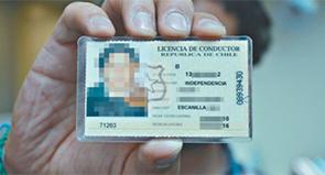 canje de licencias conductor profesional
